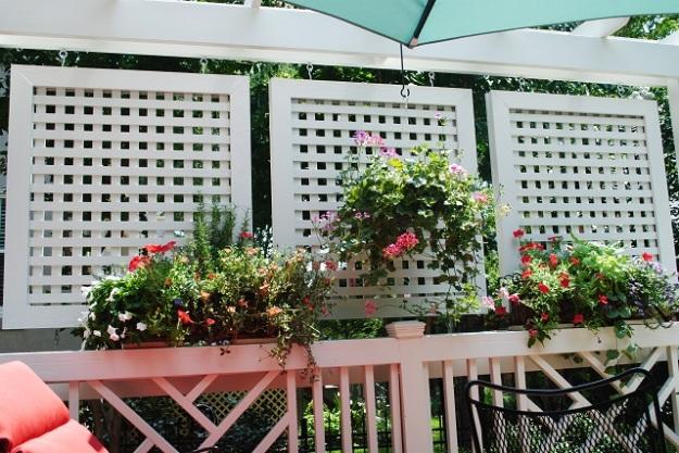 Columbia sc deck builder custom decks porches patios for Outdoor deck privacy solutions